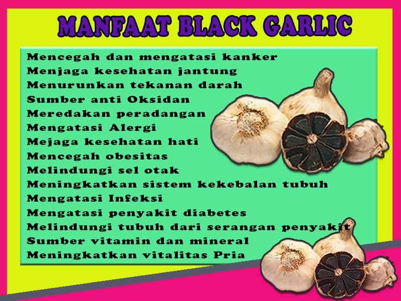 Jual Black Garlic di Kota Sugapa